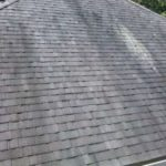common roof stains